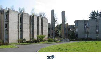 mitaka_a.jpg